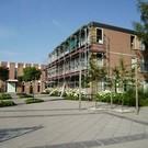 Zeldenrust Steelant college